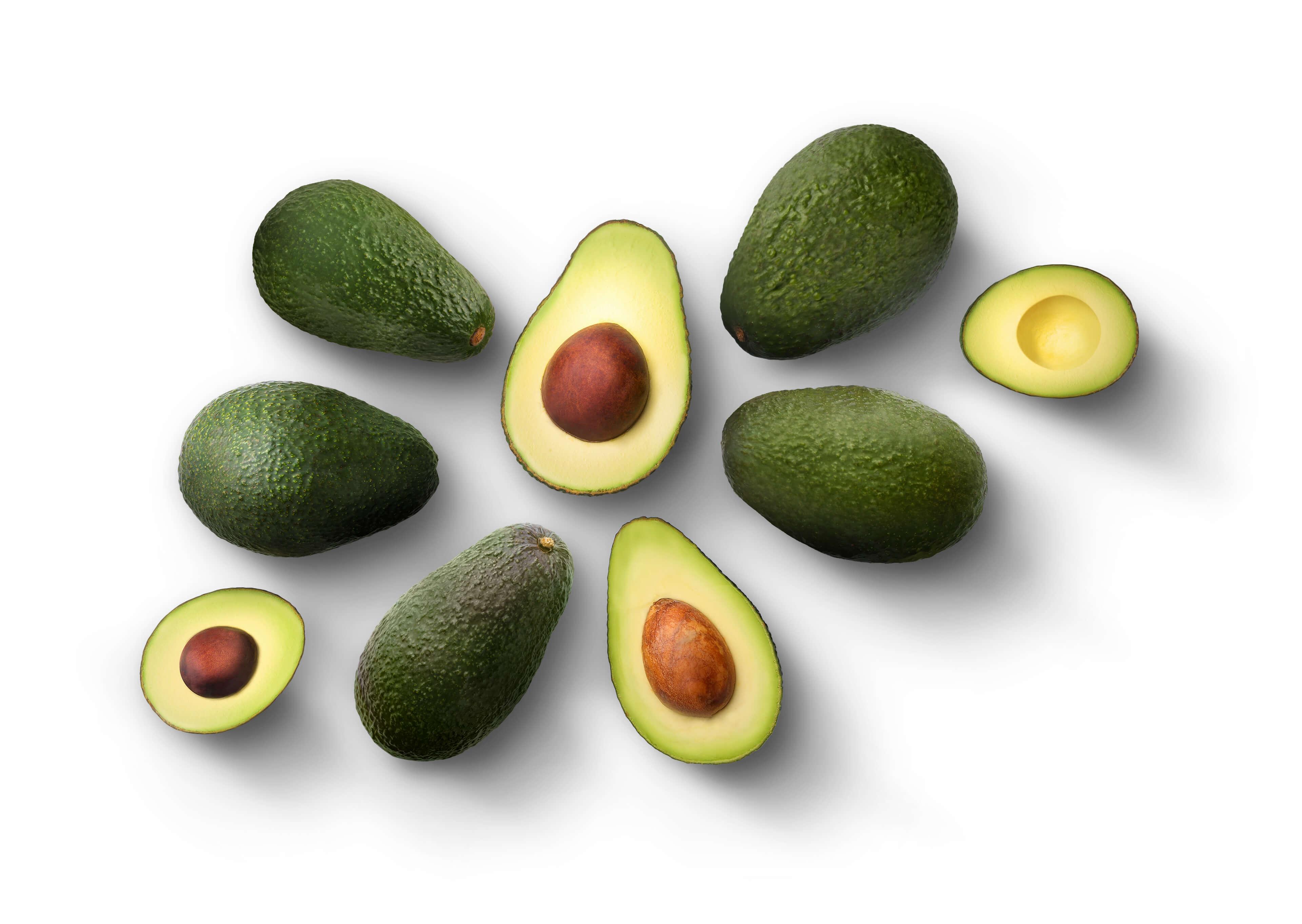 Avocado Origins